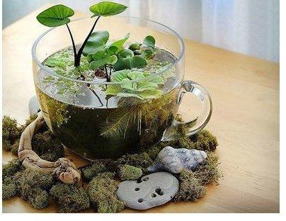 reused pot or vase02