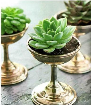 reused pot or vase09