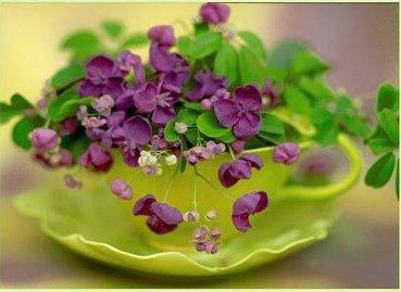 reused pot or vase11