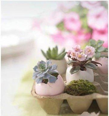 reused pot or vase12