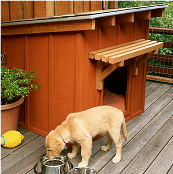 How to Build a Mini Ranch Dog house
