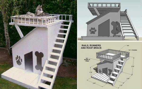 How to DIY Dog House with Roof Top Deck  DIY Dog House Projects and  Tutorials. Diy House Projects