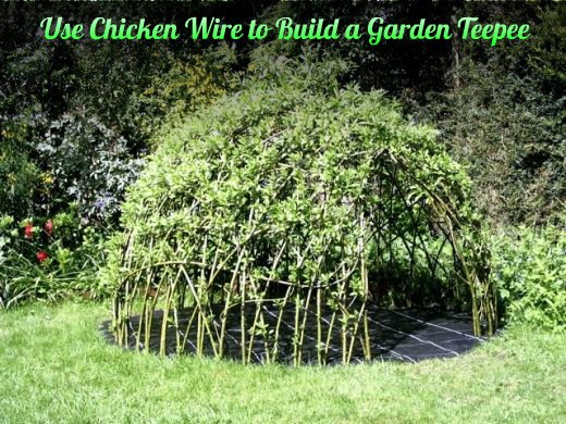 How to Use-Chicken-Wire-to-Build-a-Garden-Teepee tutorial