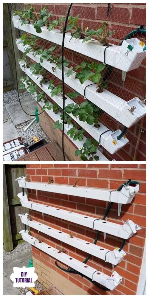 DIY Hydroponic Vertical Pallet Strawberry Planter Tutorial