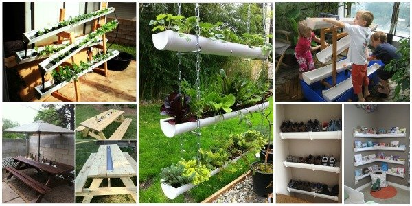 Home gardening projects