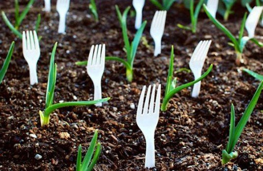 15 Gardening Hacks For A Greener Thumb