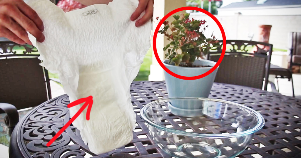 How Diapers Help Your Plants Grow