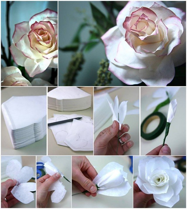 How to diy coffee filter roses for Diy rose food