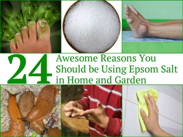 24 Awesome Epsom Salt Uses for Home and Garden - Awesome Reasons You Should be Using Epsom Salt in Home and Garden