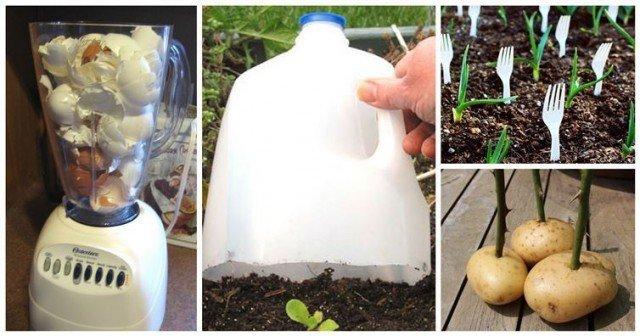 DIY Gardening Hacks For A Greener Thumb