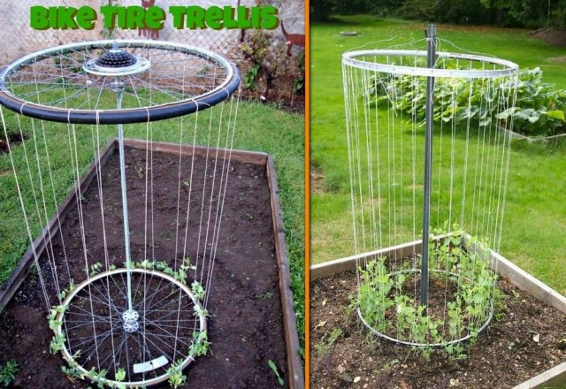 How To Make Bike Rim Trellis