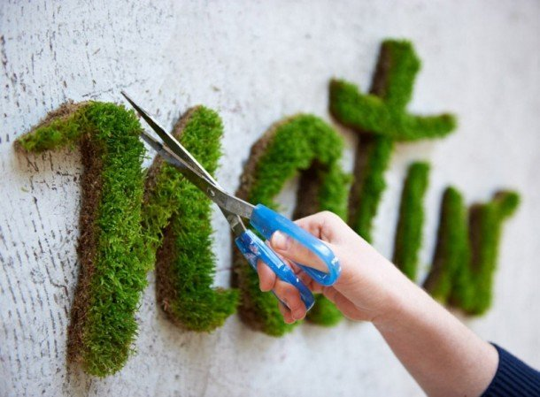 Moss Graffiti This Guy Executes The Coolest But Most Illegal DIY Project Ever