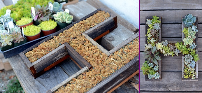DIY Wall-Mounted Succulent Letter Tutorial