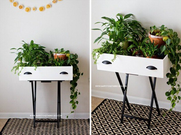 15 Creative Ways to Recycle Your Old Dresser Drawers-Drawer Plant Stand