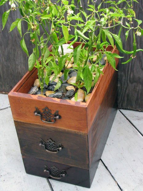 15 Creative Ways to Recycle Your Old Dresser Drawers -Self-watering Planter