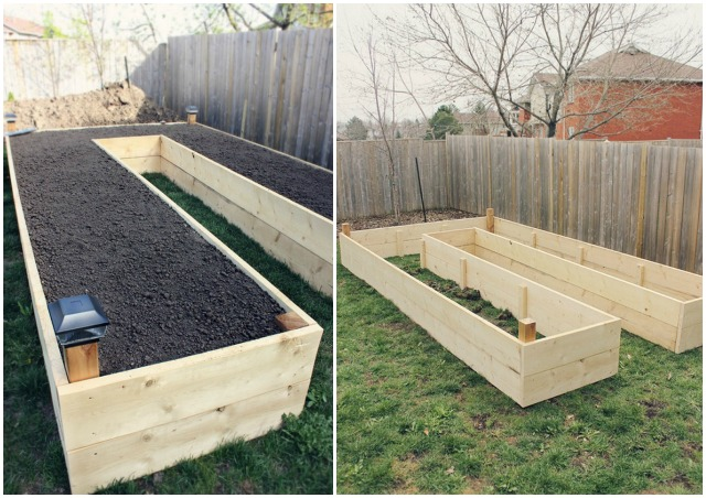 DIY U-Shaped Raised Garden Bed for Easy Access