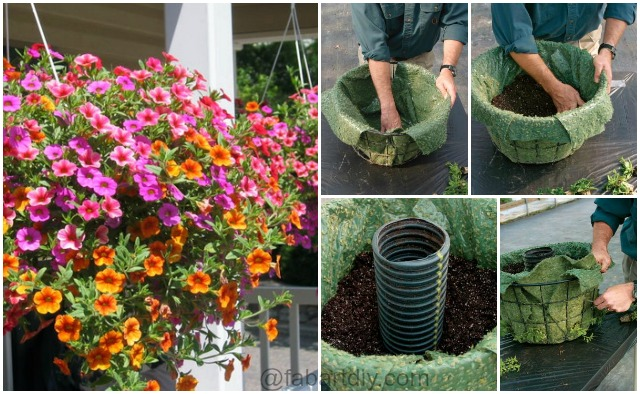 How To Make A Hanging Basket Flowers : How to build hanging basket tutorial and tips