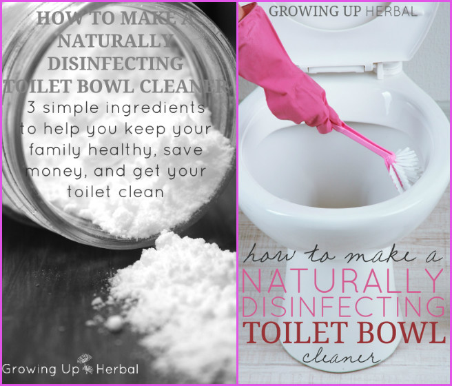 DIY Naturally Disinfecting Toilet Bowl Cleaner Recipe