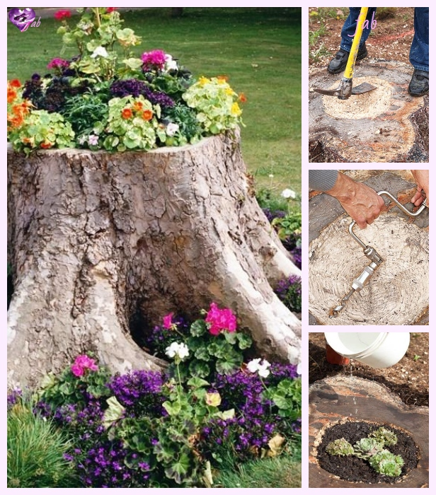 DIY Tree Stump Planters Tutorial