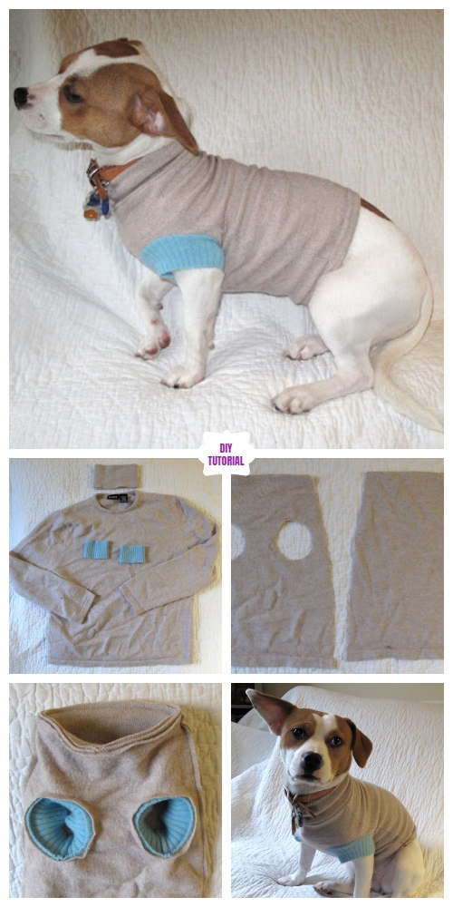 DIY Recycled Sweater Pet Coat Free Sew Patterns & Tutorials