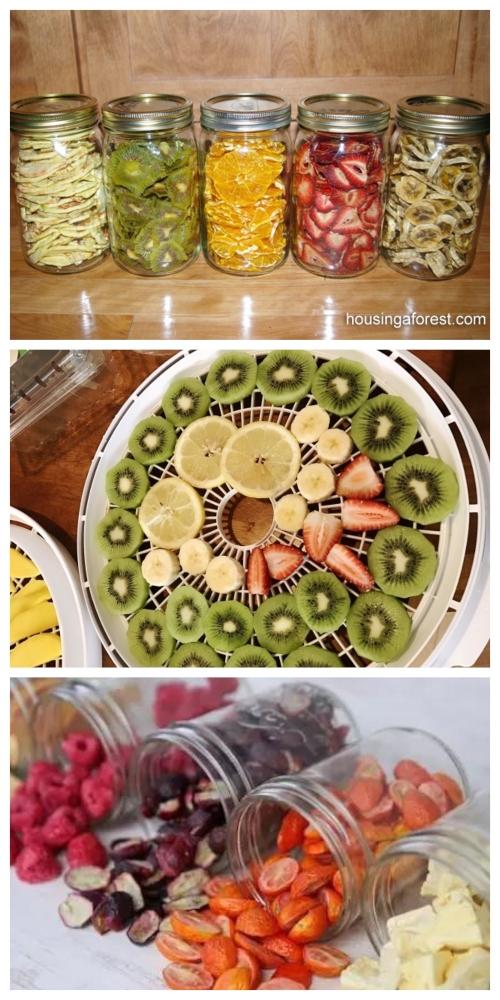 DIY Healthy Dehydrated Fruit Tutorial