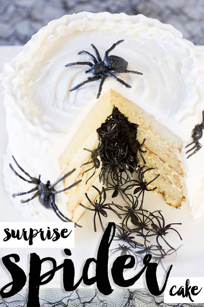 DIY Halloween Spider Surprise Cake Recipes + Tutorial